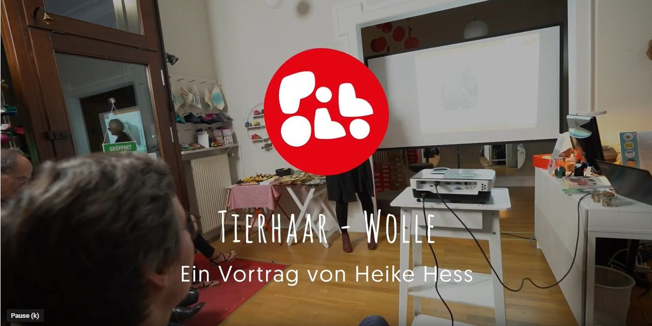 pololo-video-faserschulung-titel-wolle-vortrag-heike-hess
